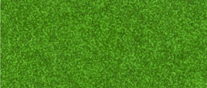 NO907 Verde